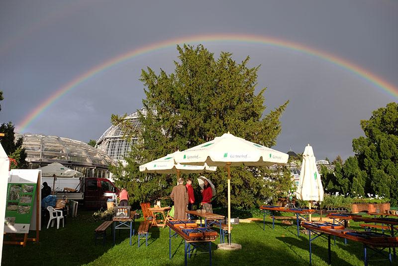 Impressionen vom Berliner Staudenmarkt