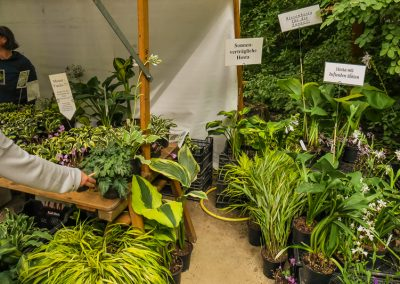 Gartenbau Thomas Ahrens