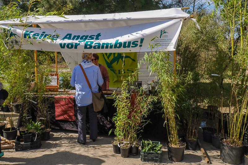 Europäische Bambusgesellschaft Sektion Deutschland e.V. auf dem Berliner Staudenmarkt