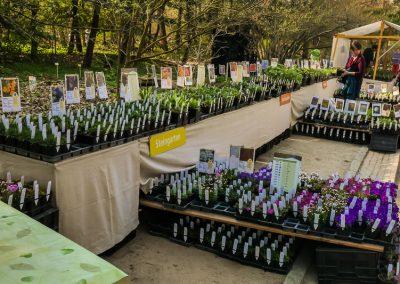 Floragarten Weinreich