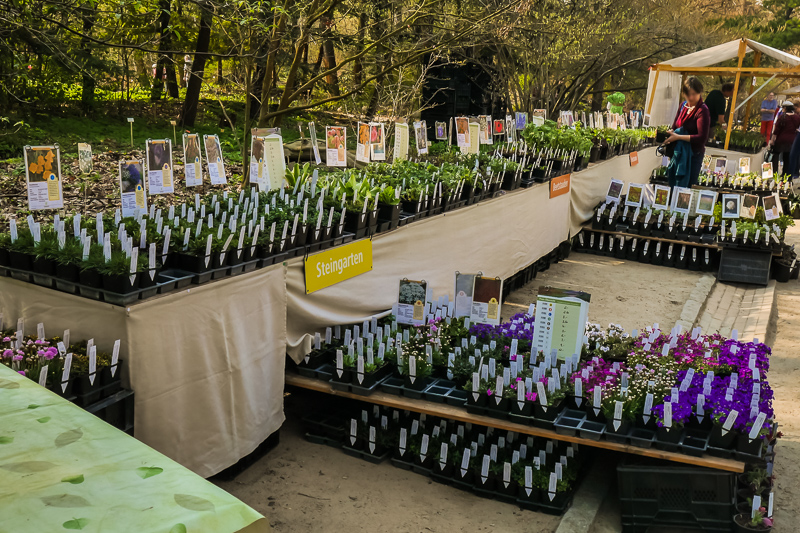 Floragarten Weinreich auf dem Berliner Staudenmarkt