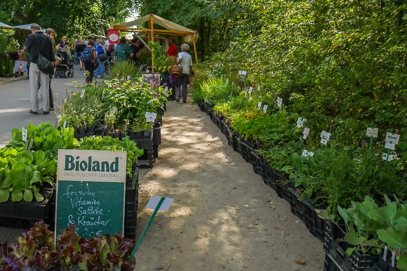herb's Bioland Gärtnerei auf dem Berliner Staudenmarkt