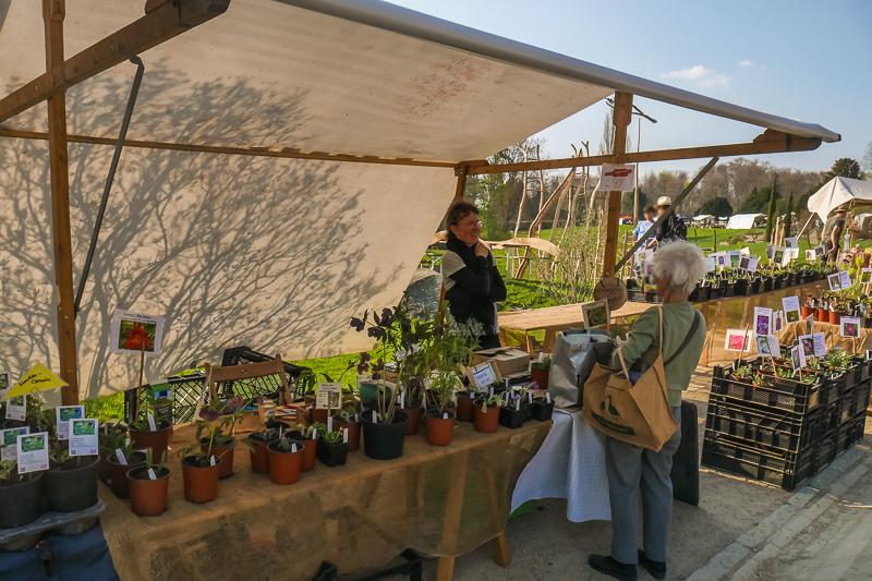 Die Kleine Gärtnerei auf dem Berliner Staudenmarkt
