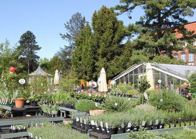 Königliche Gartenakademie