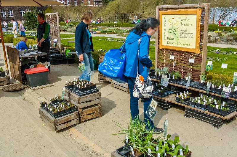 Bioland Gärtnerei Rasche auf dem Berliner Staudenmarkt