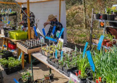 Raschke Pflanzen für Haus & Garten