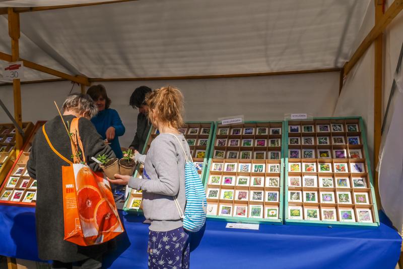 Kwekerij Silene auf dem Berliner Staudenmarkt