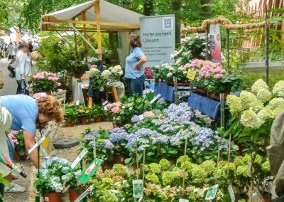 Gartenbau Ullmann