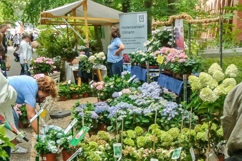 Gartenbau R. Ullmann
